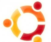 Ubuntu 9.10 Skype ir WebCam.